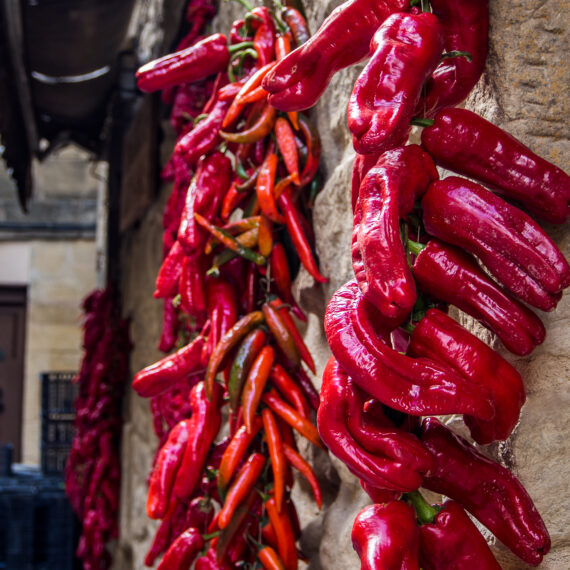 Spain travel photography: Peppers drying in the sunshine in Laguardia, Spain
