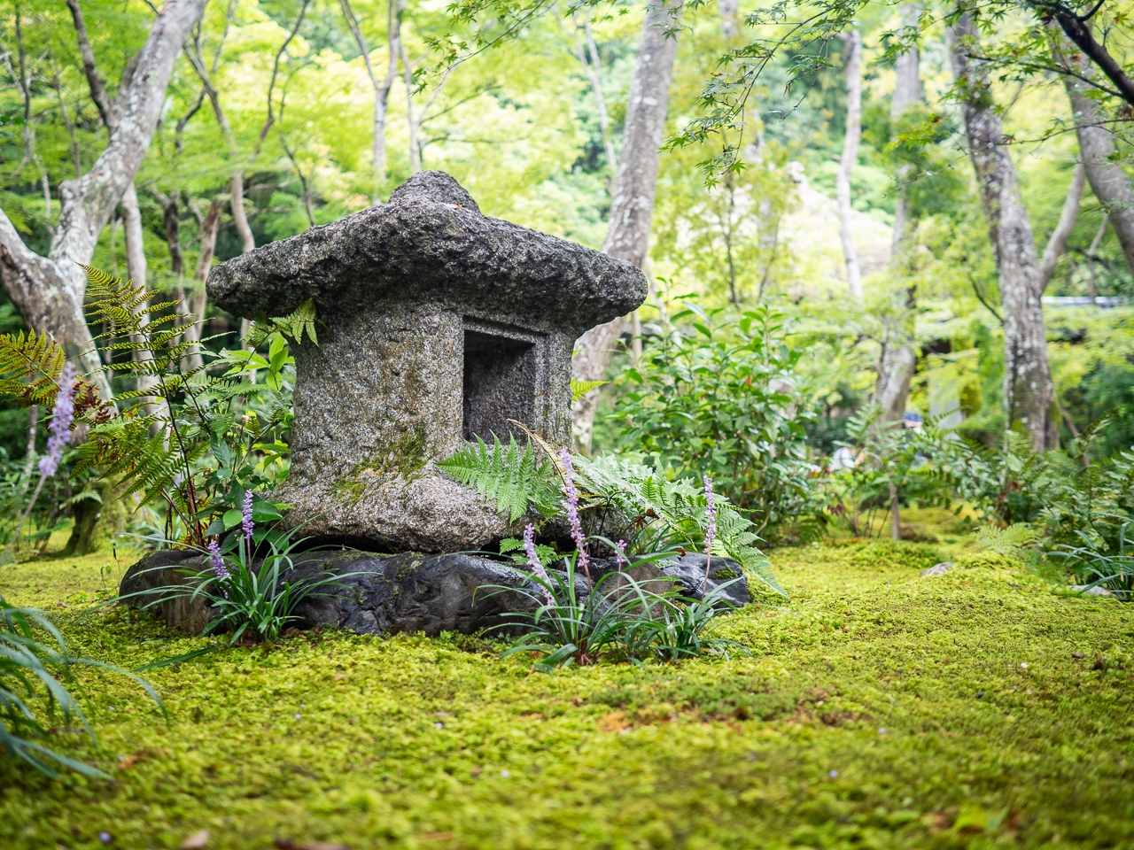 Gio-ji, an ancient Buddhist temple in Kyoto, Japan.