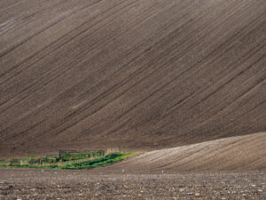 Travel photography England: Ploughed soil fields near Firle Beacon, a hill on the South Downs Way, East Sussex, England.