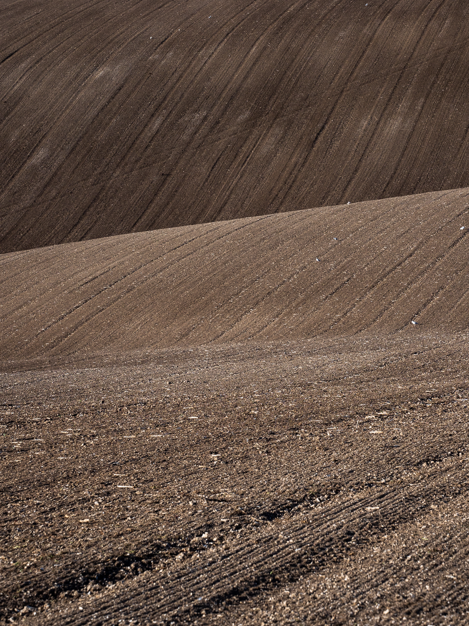 Ploughed soil fields near Firle Beacon, a hill on the South Downs Way, East Sussex, England.
