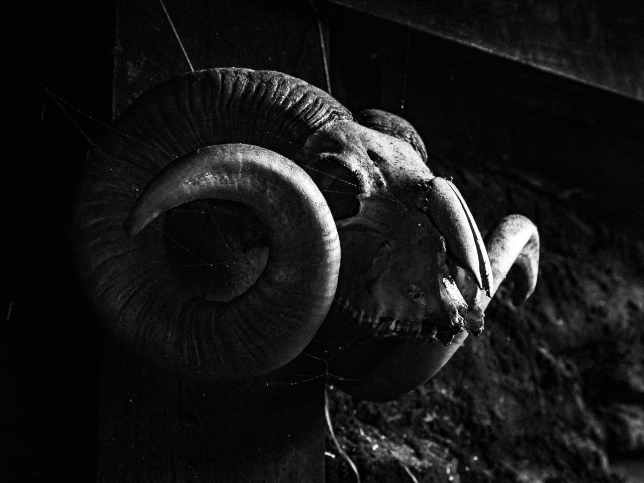 Travel photography Scotland: Sourlies bothy skull